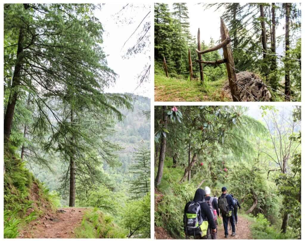Trekkers walking towards the first campsite