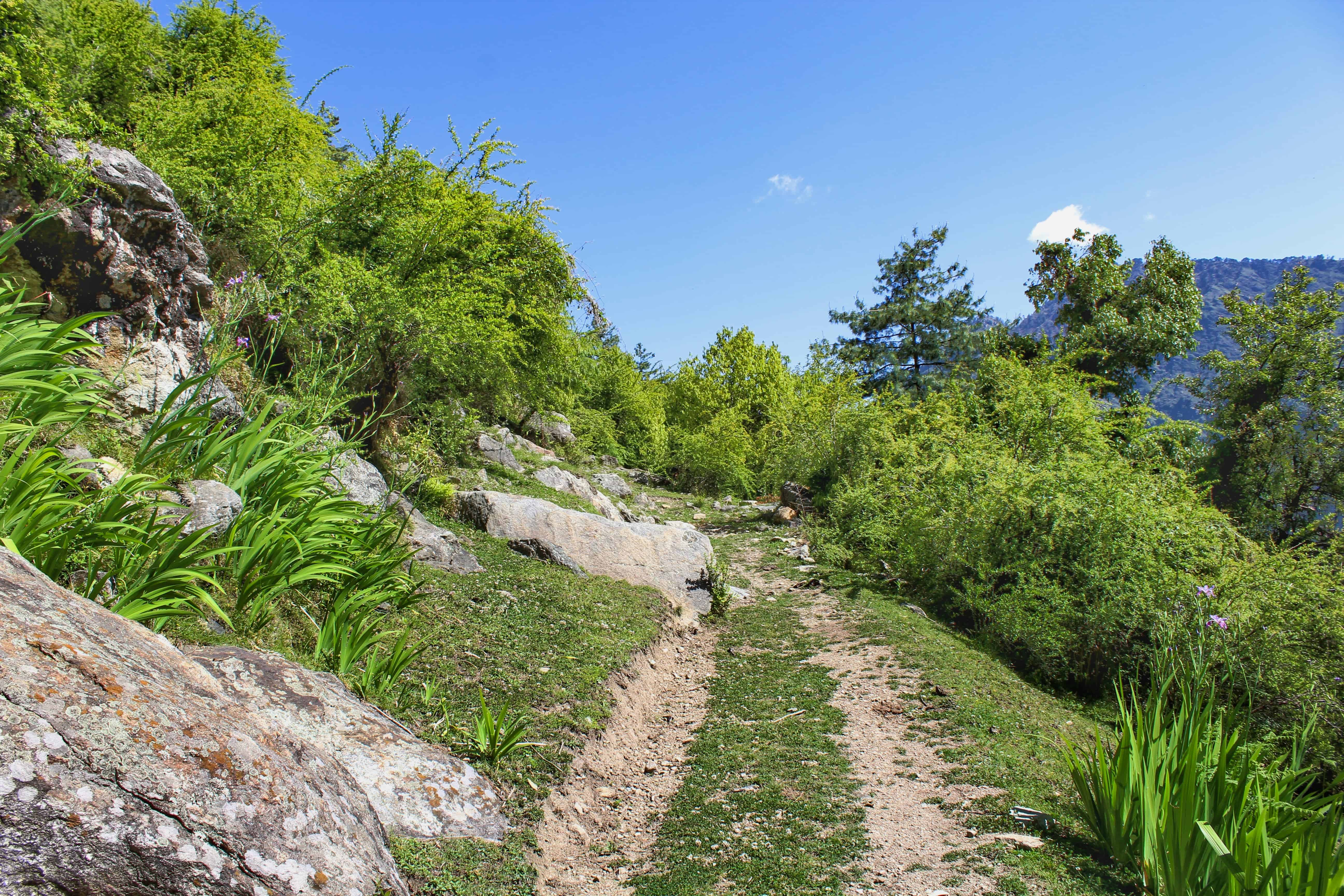A welcome flat land after a lot of uphill path