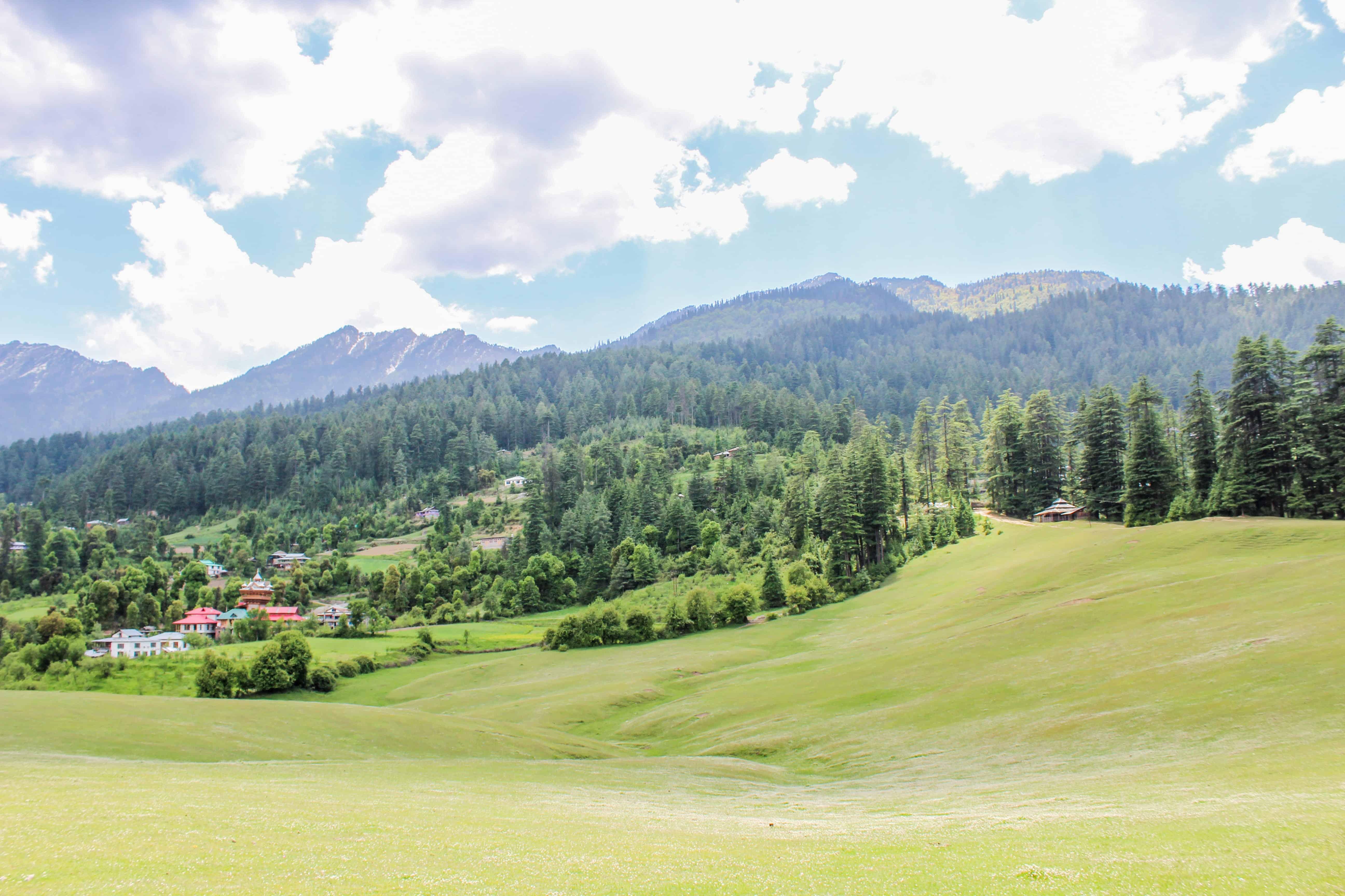 Shangarh meadow