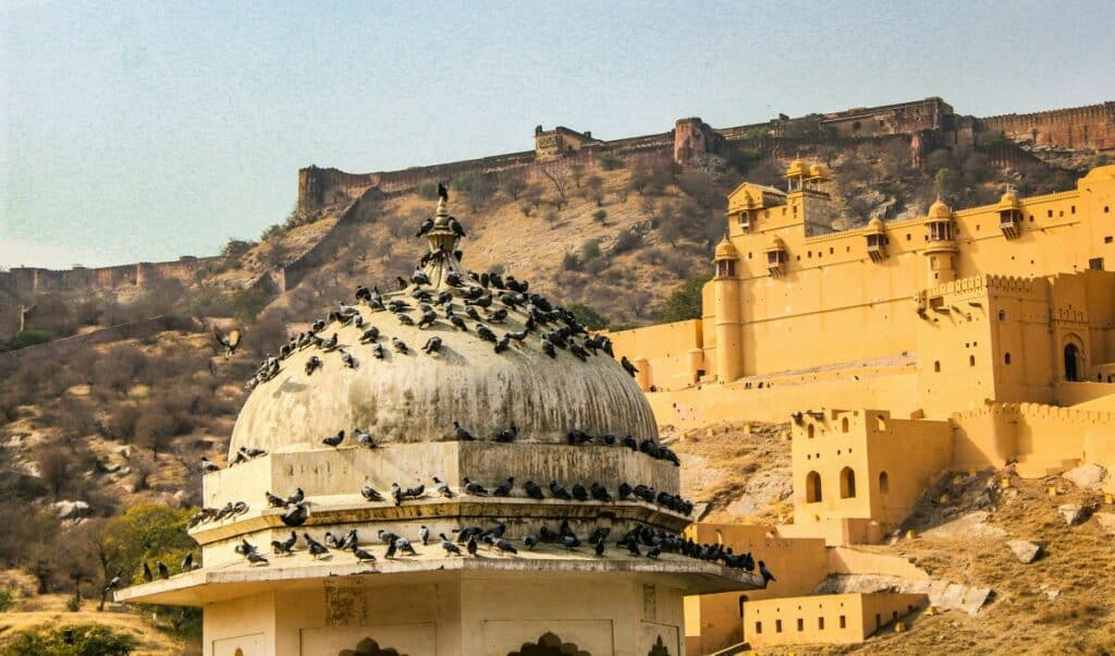 Amer Fort- One of the best places to visit in Jaipur