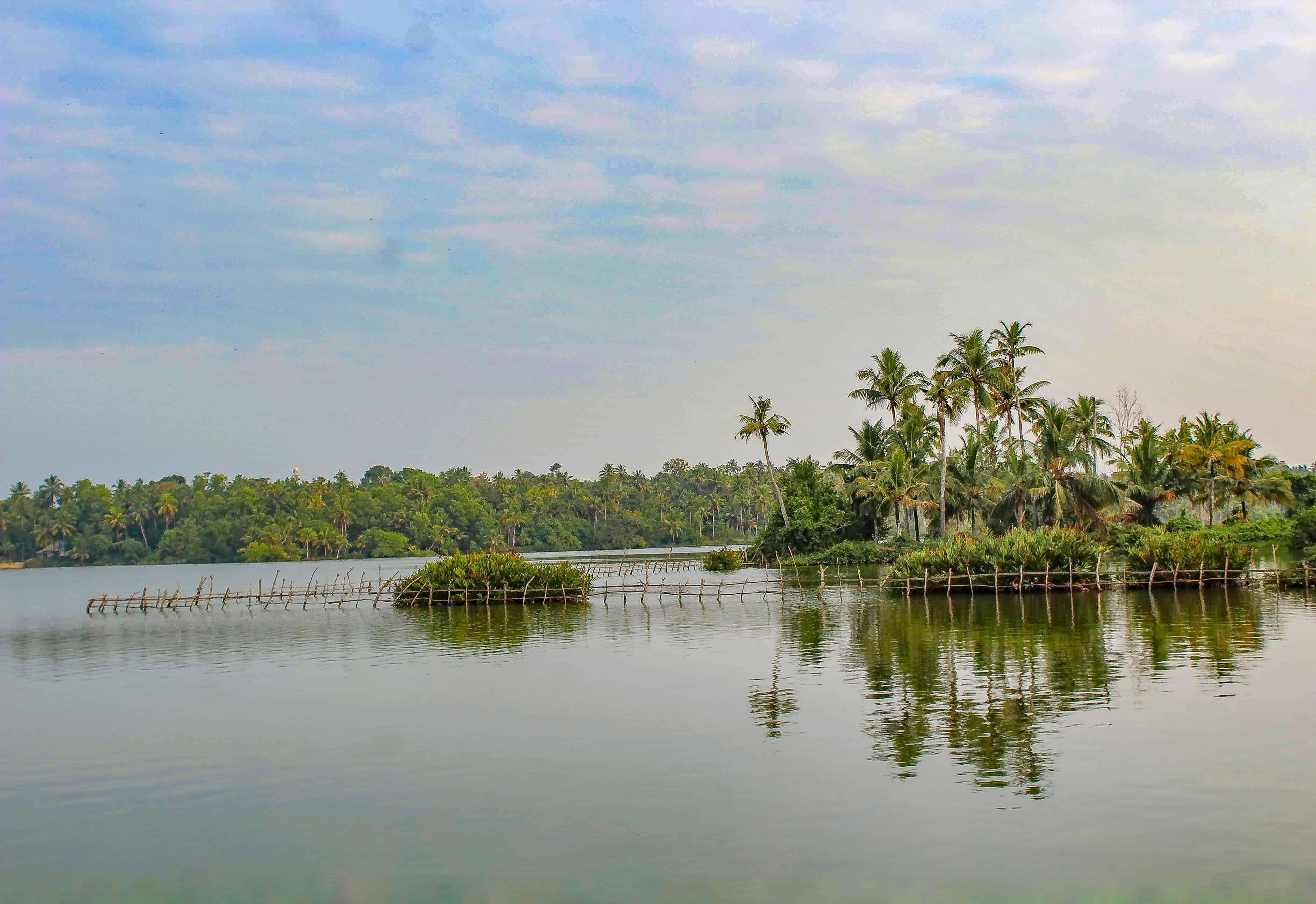 Varkala Backwaters